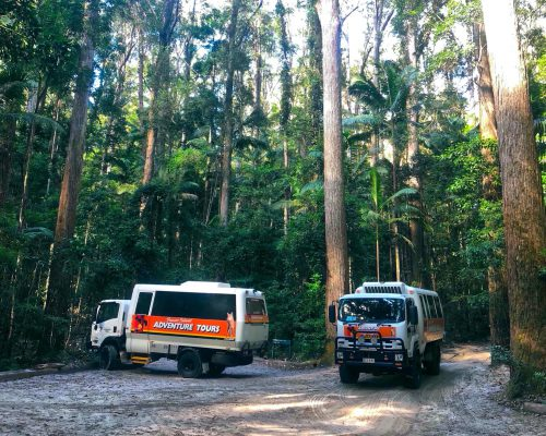 fraser-island-tour-4wd-vehicles-1